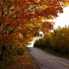 """Margaree Valley, NS • <a style=""""font-size:0.8em;"""" href=""""http://www.flickr.com/photos/111317728@N08/32286547174/"""" target=""""_blank"""">View on Flickr</a>"""